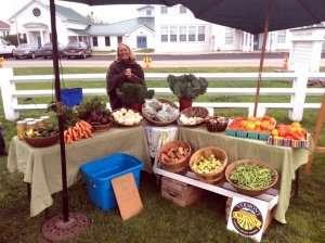 Wild Branch Valley Farm fresh vegetables - Craftsbury VT Farmers Market