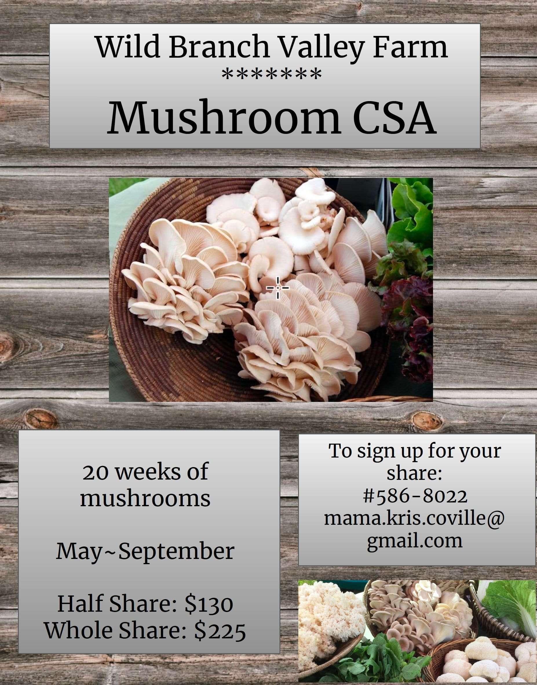 Mushroom CSA Signup - Wild Branch Valley Farm - Craftsbury Vermont