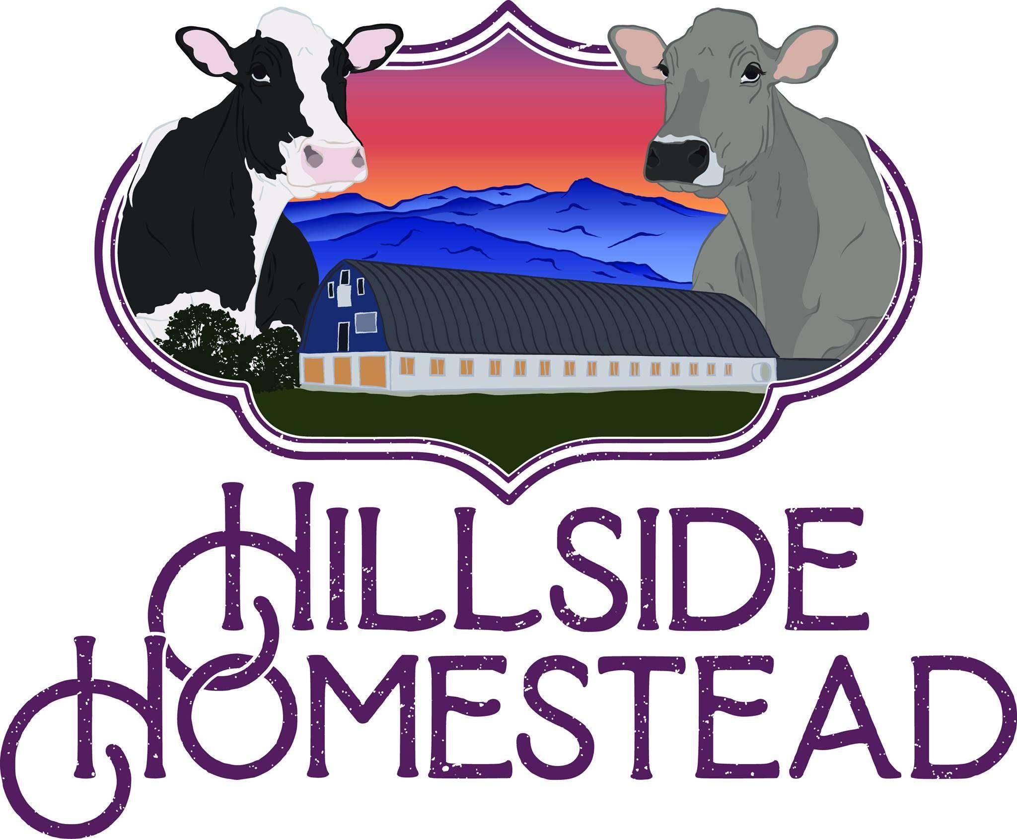 Hillside Homestead - Albany, VT