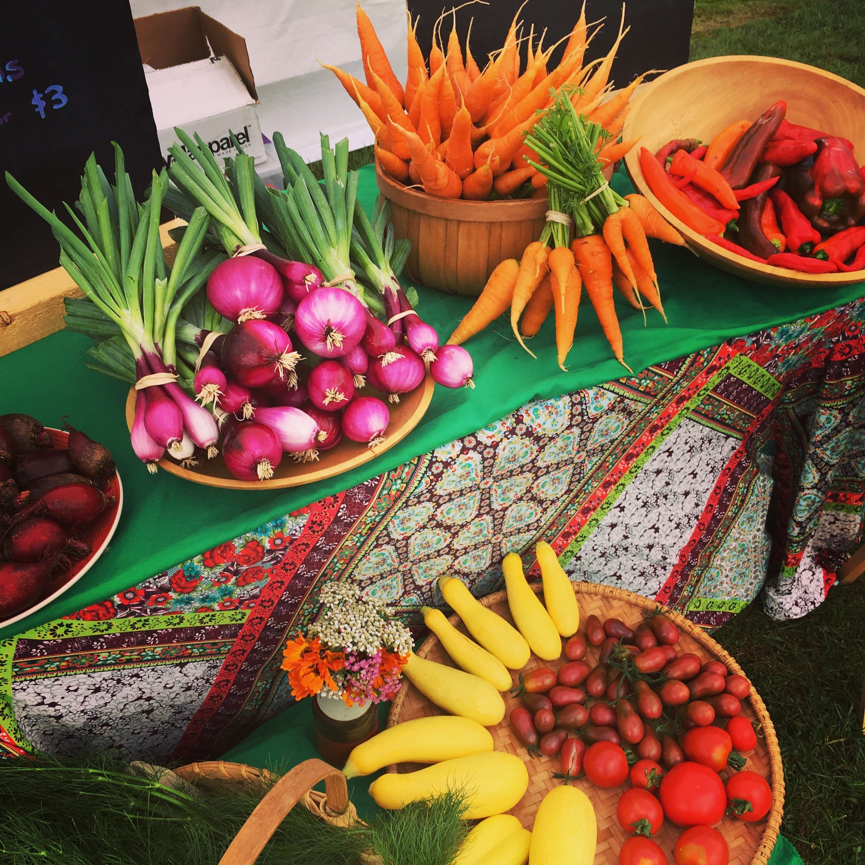 Hawthorn Meadow Farmstead ecological market garden vegetables
