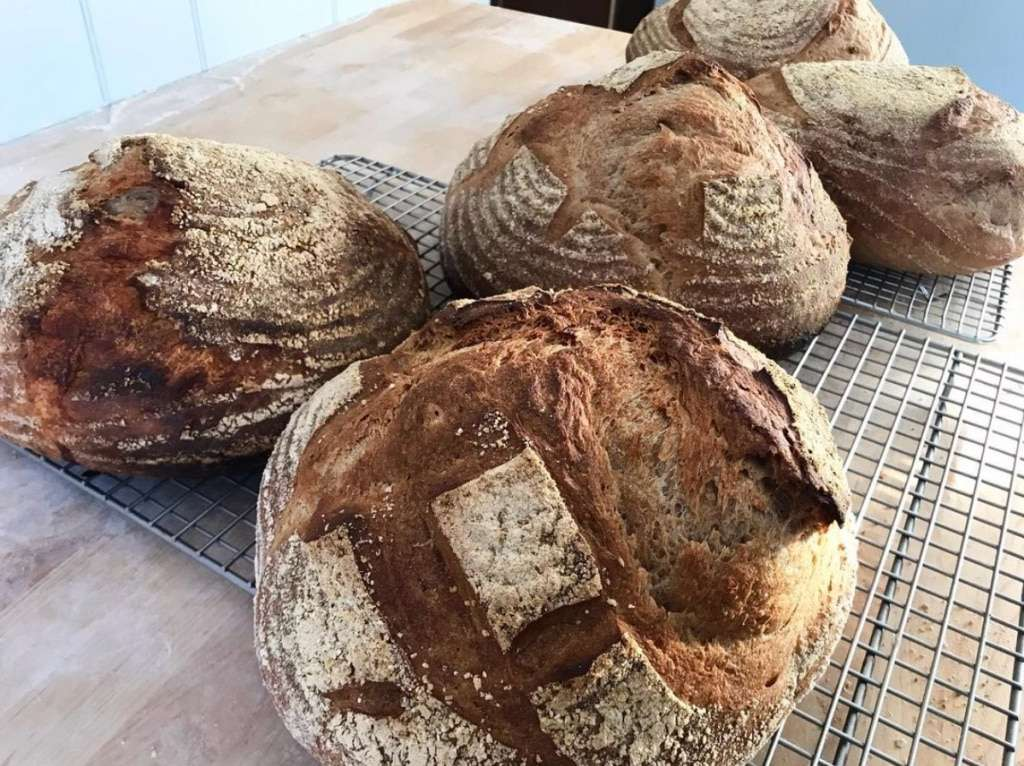 Flour Bottom Bread - sourdough - Craftsbury, VT